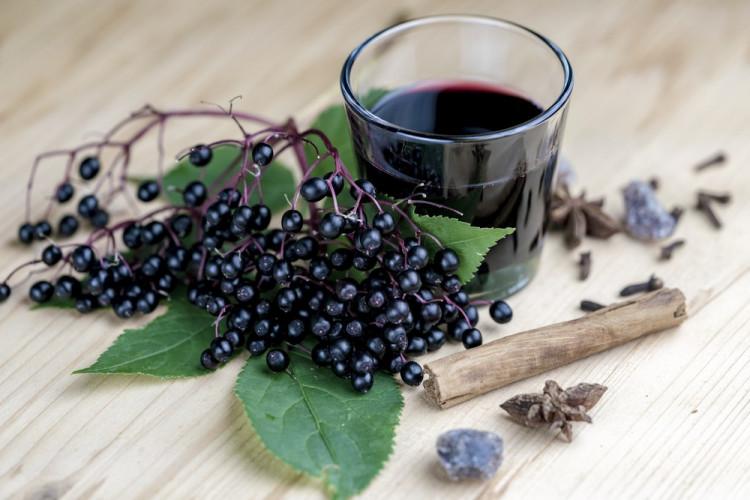 Еликсир от Черен Бъз – чудодеен при различни болести и добър имуностимулант за здраве и дълголетие.